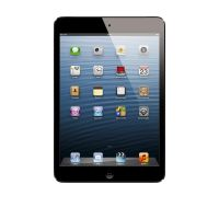 Apple iPad mini Wi-Fi + Cellular 64GB schwarz (MD542FD/A)