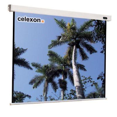 Celexon  Economy Line Motor Leinwand 240x240cm 1:1