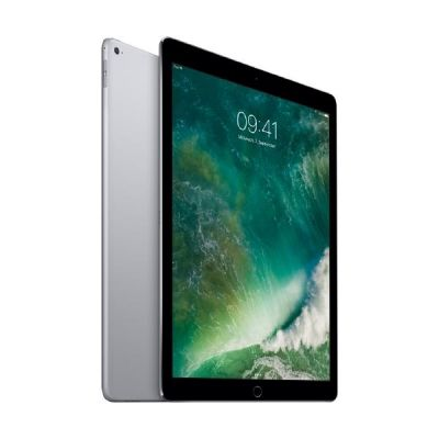 Apple iPad Pro 12,9'' 2015 Wi Fi 128 GB Spacegrau (ML0N2FD A)