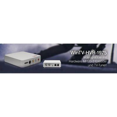 Hauppauge  WIN TV HVR-1975 DVB-C/-T/T2 USB Grabber