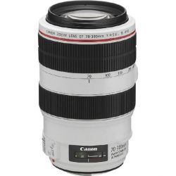 Canon EF 70-300mm f/4.0-5.6L IS USM Tele Zoom Objektiv *Aktion* Bild0