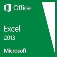 Microsoft Excel 2013 Win Open-NL 1 PC SA
