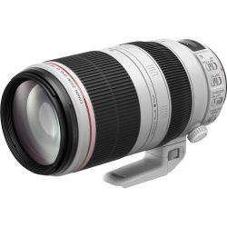 Canon EF 100-400mm f/4.5-5.6L IS II USM Tele Zoom Objektiv *Aktion* Bild0