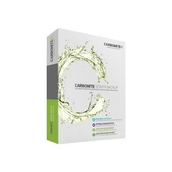 CARBONITE 100GB Storage Add-On for Carbonite Server Subscription, 2Y Bild0