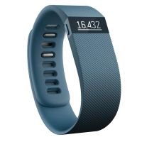 Fitbit CHARGE Fitness Tracker slate large
